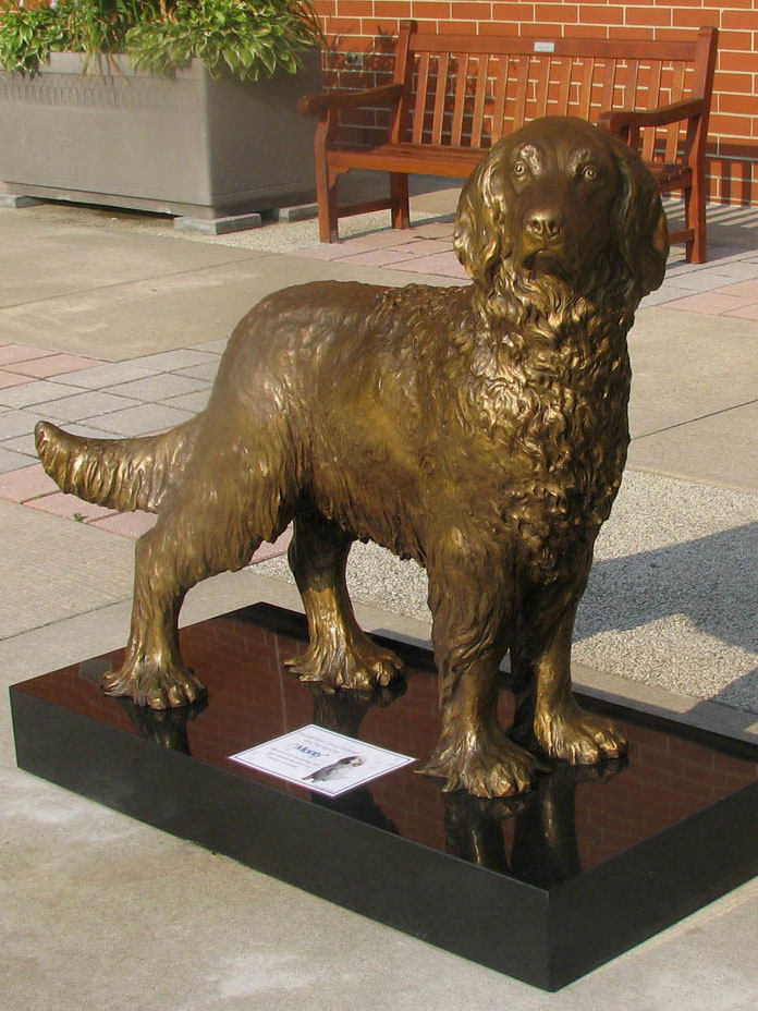 Monty the Therapy Dog bronze portrait statue by Lena Toritch