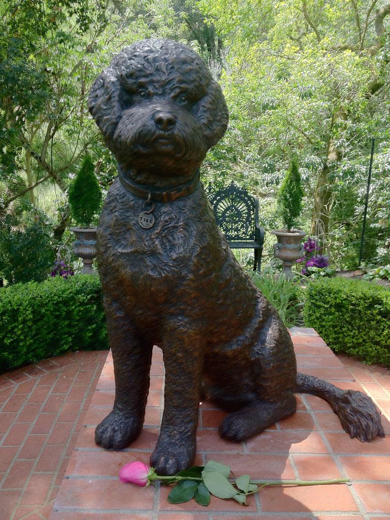 Portuguese Water Dog Tigo Custom Bronze Portrait Sculpture by Lena Toritch