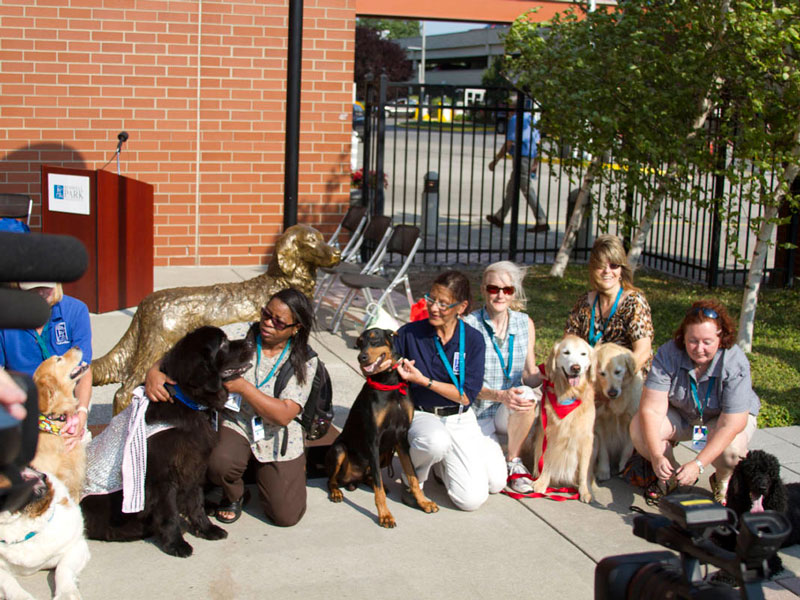 therapy dogs group at the therapy dog statue unveiling