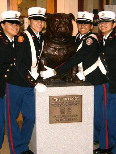 Larger than life Bronze Bulldog Mascot for high school