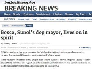 San-Jose-Mercury-News-Bosco-Lives-On-In-Spirit