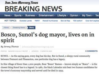 San Jose Mercury News | Bosco