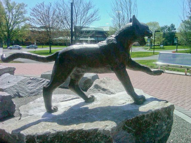 Wildcat Mascot Custom Bronze Statue by Lena Toritch installed