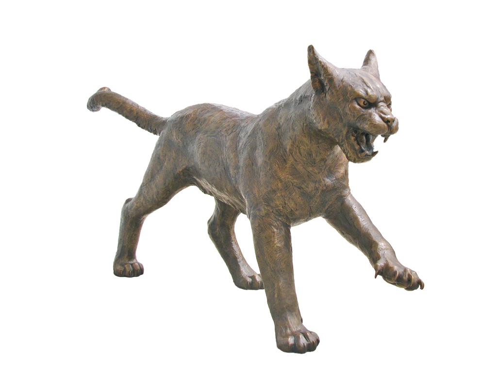Wild cat mascot